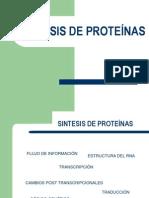 12. Sintesis de Proteinas