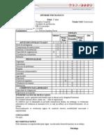 Modelo de Informe 06