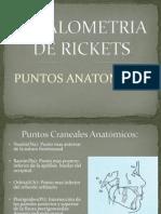 Cefalometria de Rickets