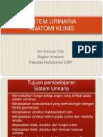 Sistem Urinarius- Anatomi Klinis- Bl 16 2009
