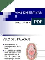 Vias Digestivas II-Deisy
