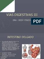 Vias Digestivas III-Deisy