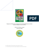 Reporte Tortugas Marinas 2008