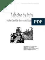 Seleccionadora de Fruta Digital