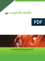 Target for ArcGIS  en Español