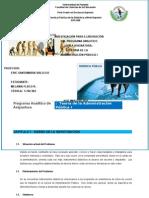 Programa Analitico Didactica13 - OriginalMELA