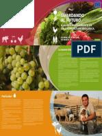 nuovo regolamento europeo agricoltura biologica