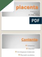 placenta.pptx