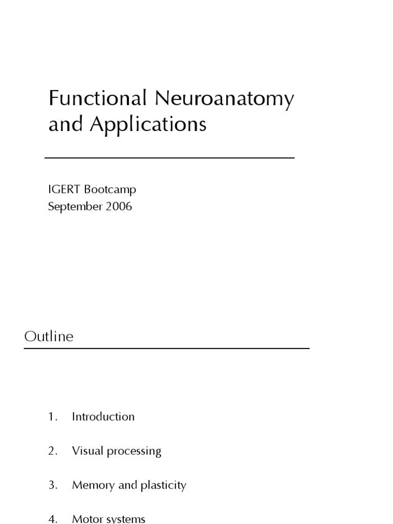 2006 Functional Neuroanatomy Tutorial | Visual System | Cerebral Cortex