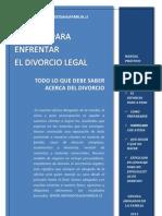 0 Libro Acciones Antes Del Divorcio_1n Version Para Download