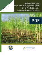 Manual de Buenas Prácticas Agrícolas