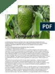 Fruta Que Destruye El Cancer