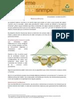 PDF Informe Quincenal Mineria Reservas Mineras