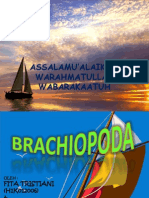 Brachiopoda, Bismillah. . .