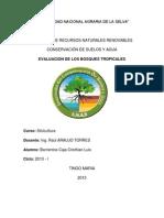 informe de silvicultura Nº 1
