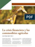 17 D Angelo La crisis financiera y las commodities agrícolas