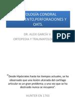 PATOLOGÍA CONDRAL TRATAMIENTO,PERFORACIONES Y OATS