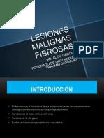 LESIONES MALIGNAS FIBROSAS