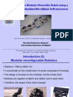 Locomotion of a Modular Worm-like Robot using a FPGA-based embedded MicroBlaze Soft-processor. Slides