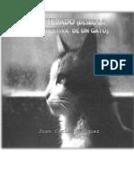 El Tejado (Desde la Perspectiva de un Gato) por Juan Carlos Vasquez