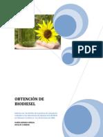 Informepracticadelaboratorio Biodiesel 090308174714 Phpapp01