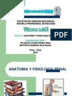Fisiologia Renal Exposicion