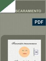 ENMASCARAMIENTO[1]