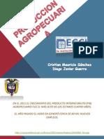 Produccion Agricola (1)