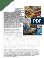 Base Economica de Centroamerica