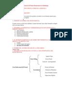 Cuestionario Anatomia