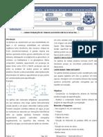 prática 07 - Bioquímica