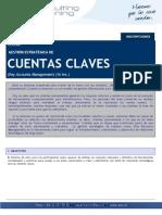 Ficha Gestion Estrategica de Cuentas OK Final_2010