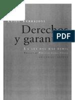 Derechos y Garantías-060509