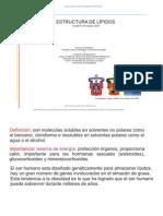 EM. Lipidos, Estructura