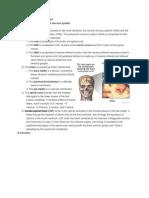 Anatomy and Physiolog   y!