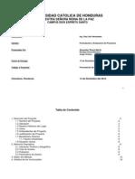 Informe del Mercado Formulacion.pdf