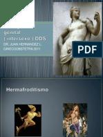 ambigedadgenital-110611184355-phpapp01