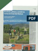 2013-06-28 IDEAL Encinas, Pinos y Enebros Renacen Tras Las Llamas