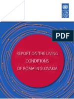 Report on the living conditions of Roma households in Slovakia 2007