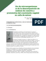 Aplicación de microorganismos promotores de la descomposición de los residuos de cosecha y promotores del crecimiento vegetal en caña de azúcar