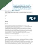 Evaluación del efecto de la activación de genes de resistencia contra patógenos en plantas de soya con concentraciones modificadas de ácidos jasmonico a partir de biofermentados de Jatropha Curcas