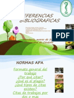 Normas APA- Julio 2013