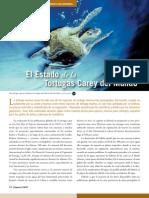uicn tortugasCarey.pdf