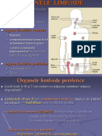 Organe Limfoide Periferice