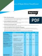 BT-5133-APR08 (Direct Policy Summary)