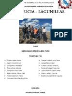 Informe de Lagunillas