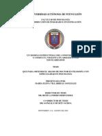 tesis-m-villarreal.pdf