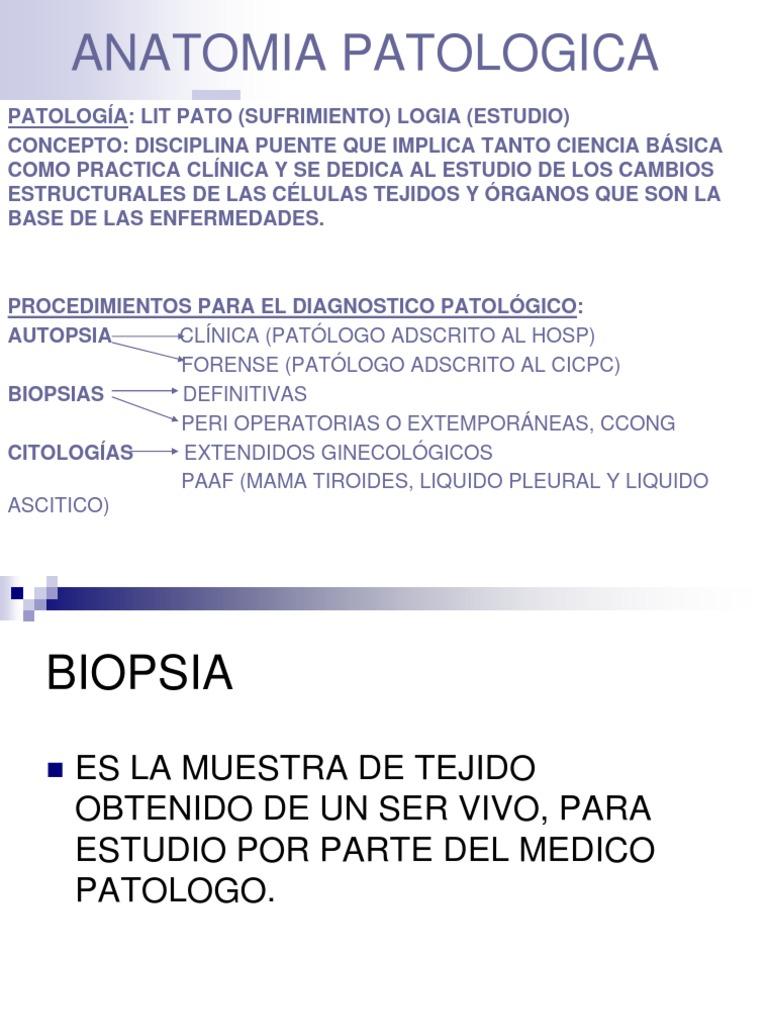 Lujoso Definición Anatomía Microscópica Cresta - Imágenes de ...