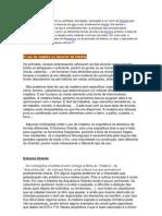 Estética e história da madeira.docx