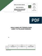 Guia Clinica Paladar Hendido